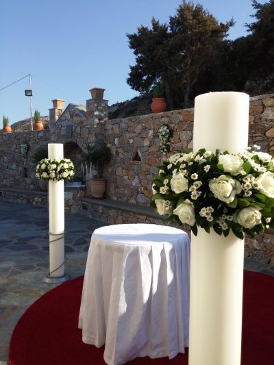 White Olive 8