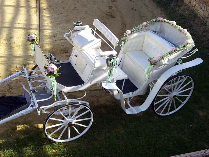 Γάμος «Cinderella»
