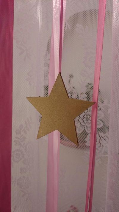 Littlestar10