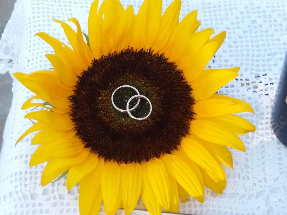 Γάμος «Ηλιοτρόπια & Λινάτσα»