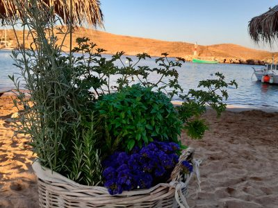 Boho Wedding Syros 2019 16