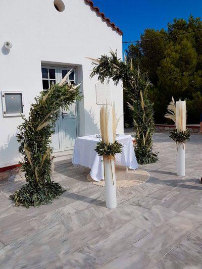 Olive Pampas 2019 30